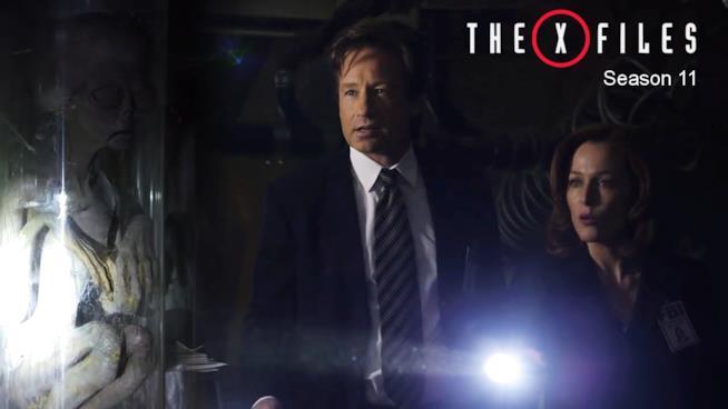 X-Files: Mulder e Scully nella stagione 11