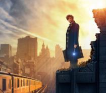 Newt Scamandro, intepretato da Eddie Redmayne, nel nuovo poster del fantasy di Rowling
