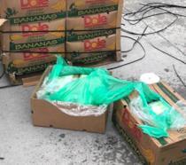 Casse di banane con cocaina regalate al Texas Department of Criminal Justice