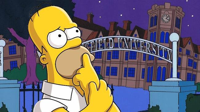 Homer Simpson, il pensatore
