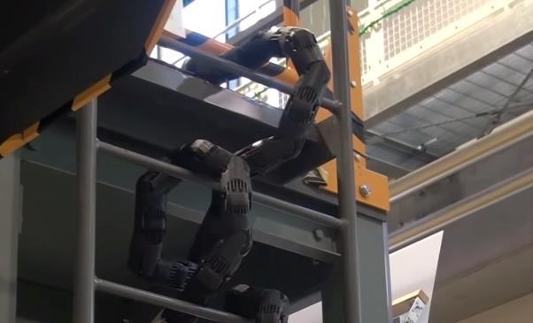 Il serpente robot creato dagli scienziati