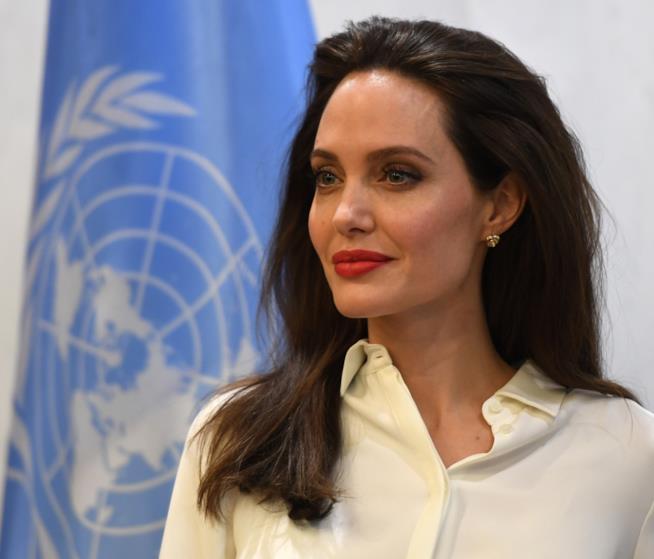 Angelina Jolie vs Harvey Weinstein