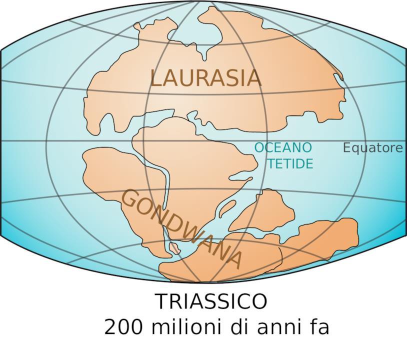 Un'illustrazione di Laurasia e Gondwana