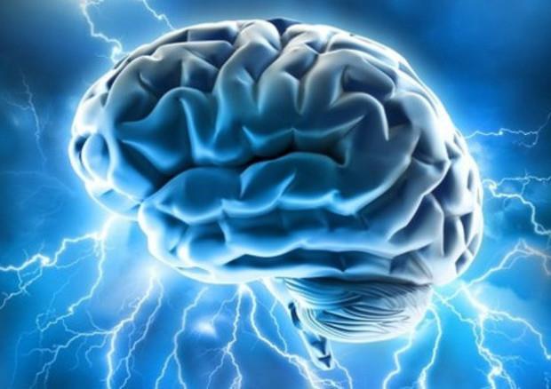 Un'immagine che raffigura il cervello umano