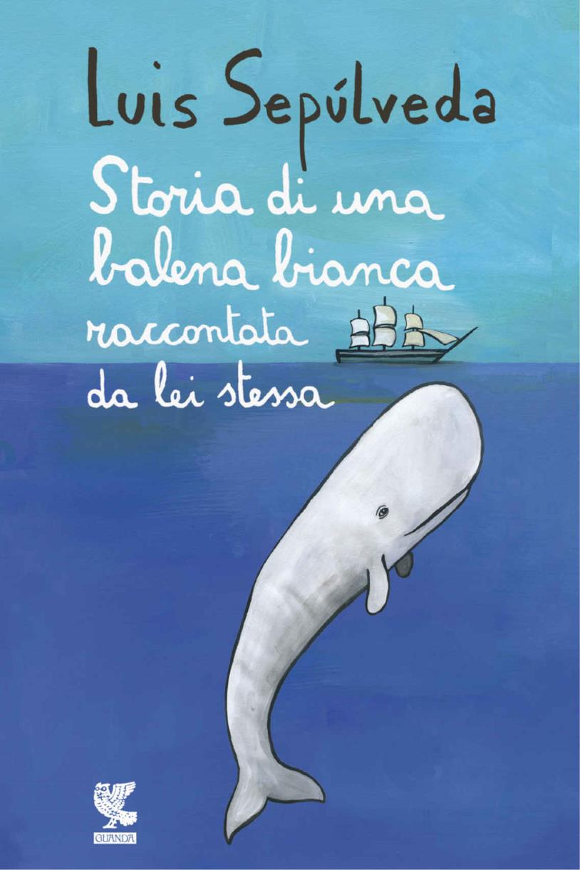 Una balena bianca