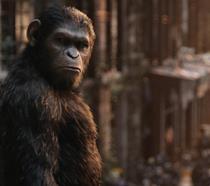 Nuovi film della saga Il Pianeta delle Scimmie, Disney conferma