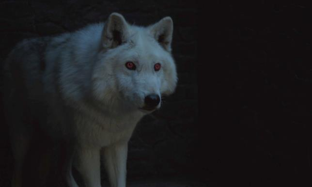 Ghost in scena in Game of Thrones