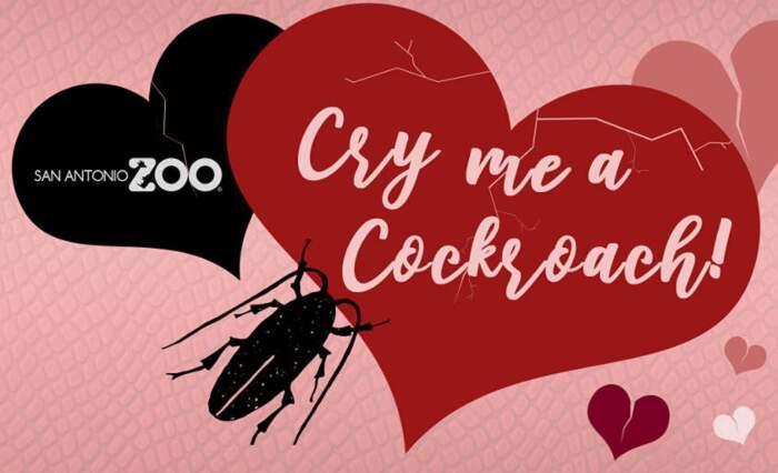 Immagine promozionale dell'iniziativa Cry Me a Cockroach