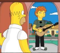 Homer osserva Ed Sheeran