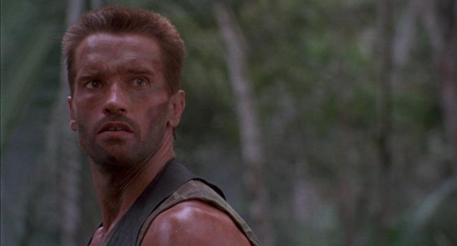 L'attore Arnold Schwarzenegger