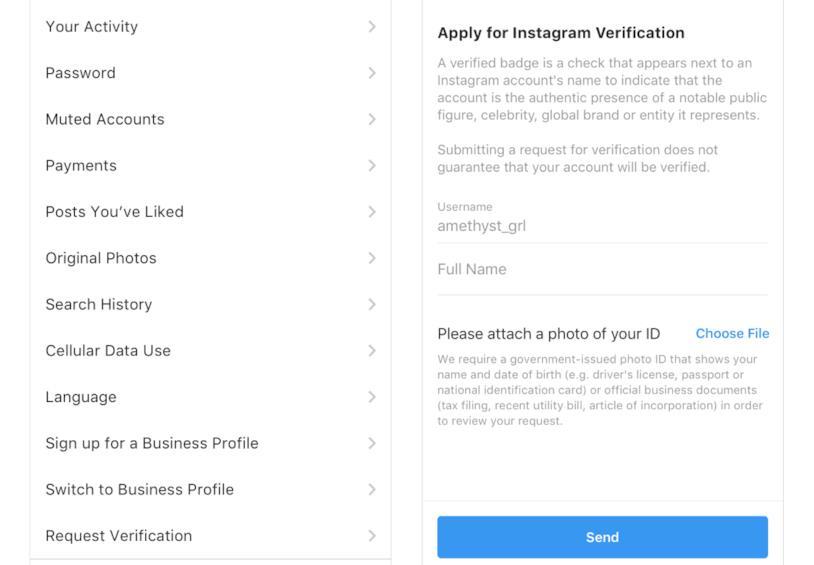 Immagine mostra come richiedere la verifica dell'account