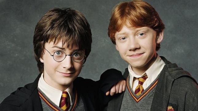 Harry Potter e il suo piccolo amico Ron Weasley