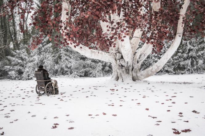 Bran Stark e l'albero-diga in GoT 8x02
