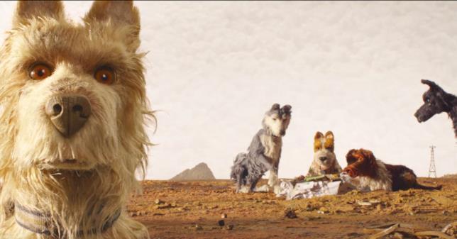Chief e i protagonisti di L'isola dei cani