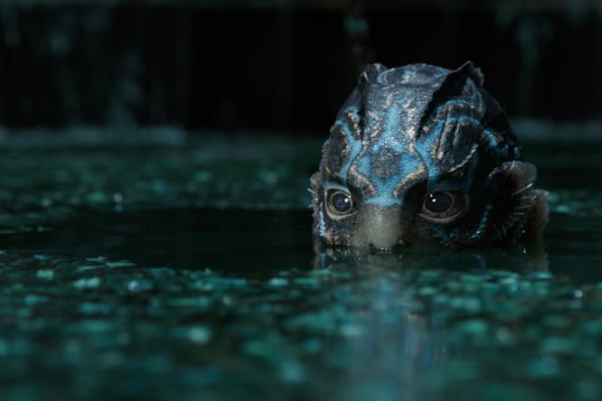 La creatura marina spunta dall'acqua