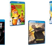 Universal Pictures: Home Video
