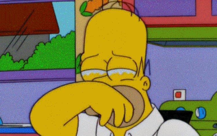 Homer Simpson con le mani in faccia