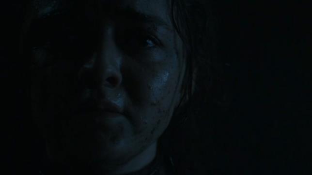 GoT 8: Arya