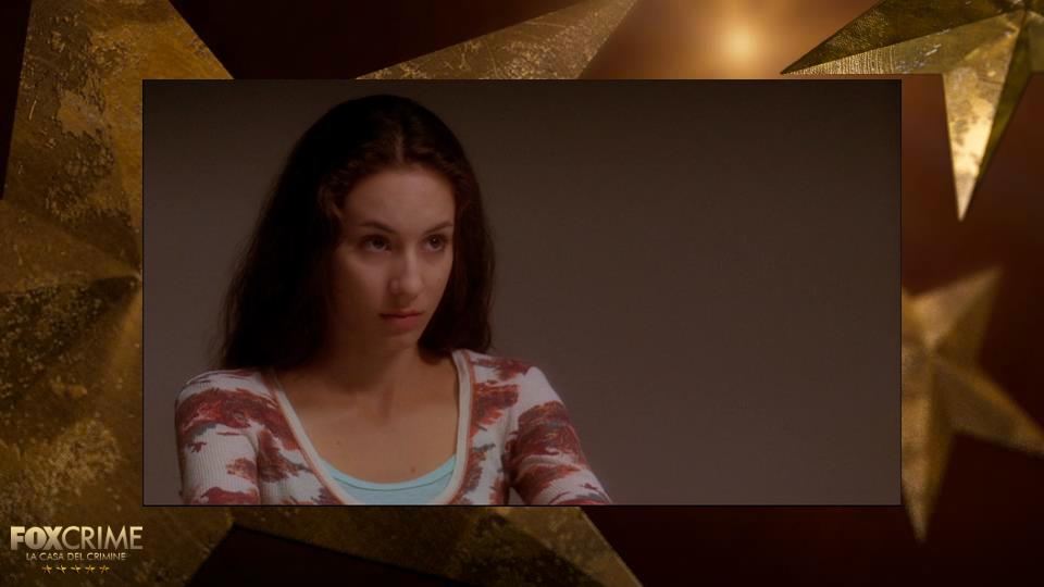 Troian Bellisario, prima di Pretty Little Liars, ha interpretato Sarah McGee in NCIS.