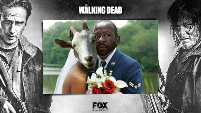 Meme su Tabitha in The Walking Dead