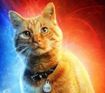 Character poster di Captain Marvel dedicato a Goose