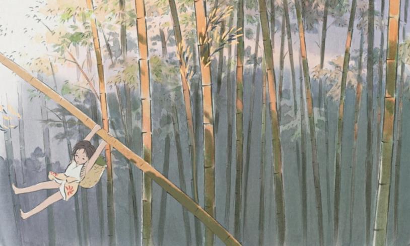 Gemma di Bambù nella foresta