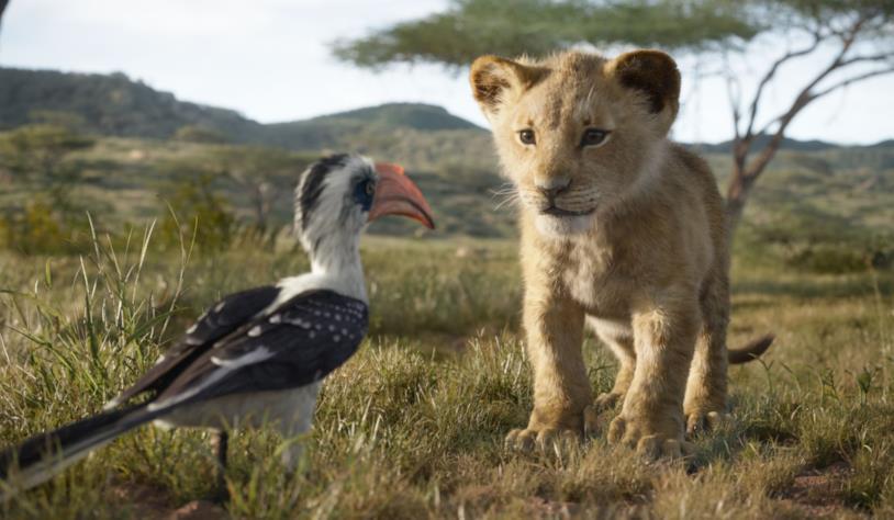 Zazu e Simba nella savana