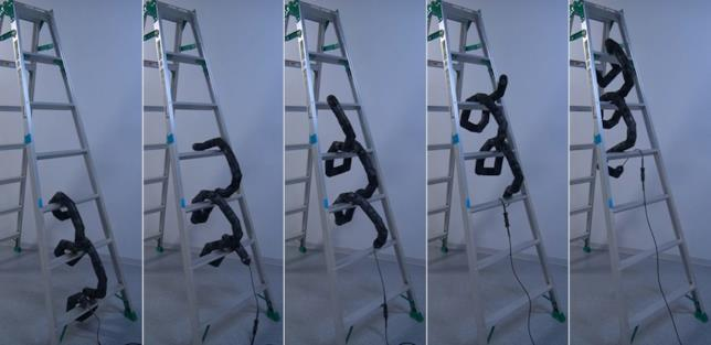 Il serpente robot capace di risalire le scale