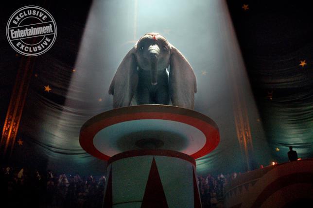 L'elefantino Dumbo pronto ad esibirsi al circo