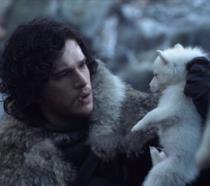 Kit Harington (Jon Snow) e il cucciolo di Ghost