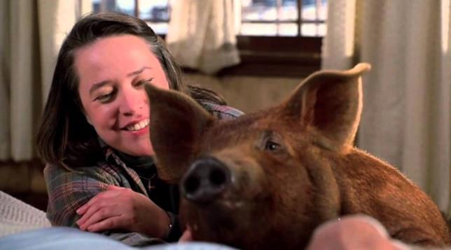 Annie e il maiale in Misery non deve morire