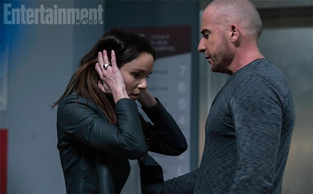 Sarah wayne callies e lincoln burrows