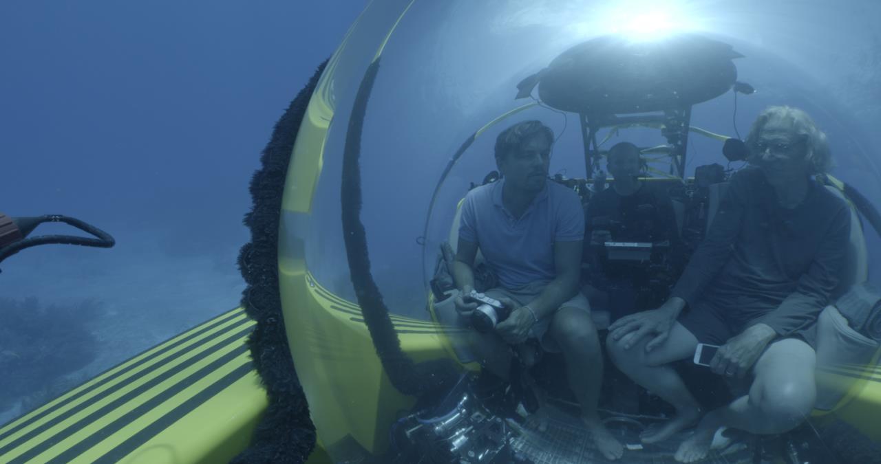 I fondali marini sono anch'essi in pericolo e DiCaprio ci svelerà quali rischi corra