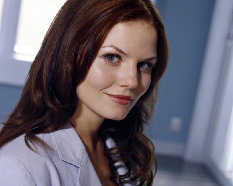 Allison Cameron nella serie Dr. House
