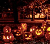 Una distesa di zucche nella notte di Halloween