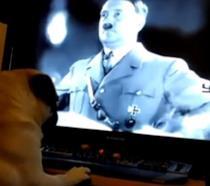 Video a sfondo razzista su YouTube: l'autore deve pagare una multa di 913 euro