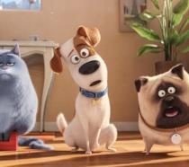 Pets Vita da Animali: i protagonisti