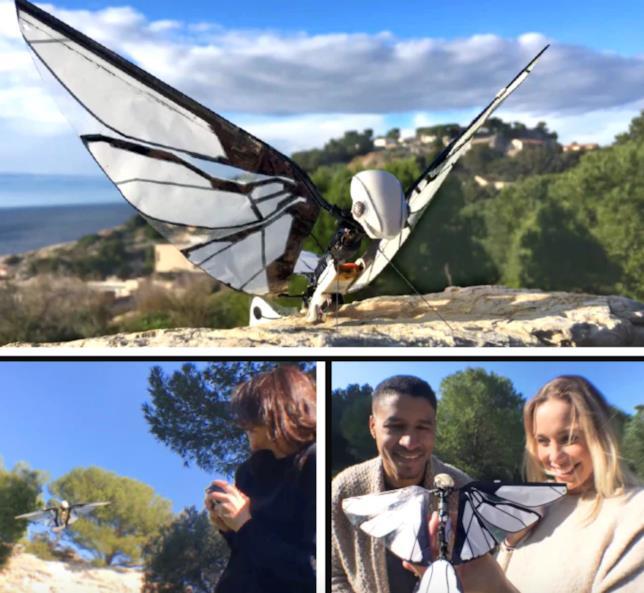 Foto del drone MetaFly di Edwin Van Ruymbeke