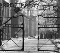 L'ingresso di Auschwitz