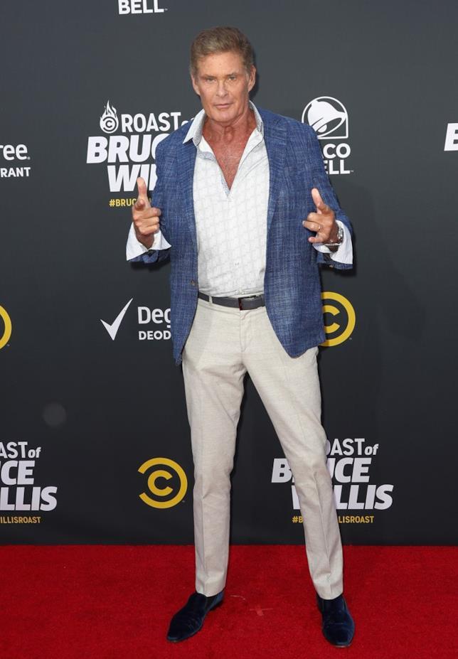 David Hasselhoff in posa per i fotografi