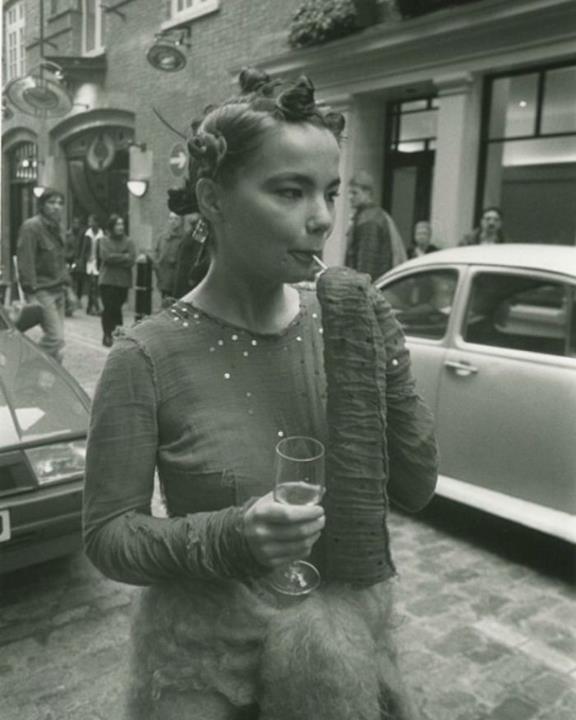 Bjork nel 1994