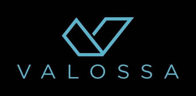 Il logo originale di Valossa