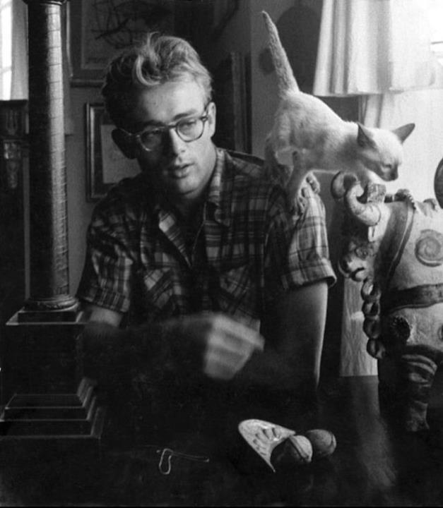 James Dean e il suo gatto Marcus