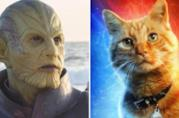 A sinistra uno degli Skrull del film Captain Marvel, a destra il gatto Goose