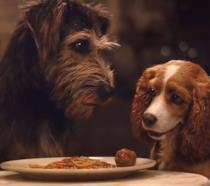 Lilli e il Vagabondo: il secondo trailer ufficiale del remake Disney