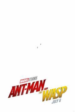 I microscopici Ant-Man e Wasp su sfondo bianco