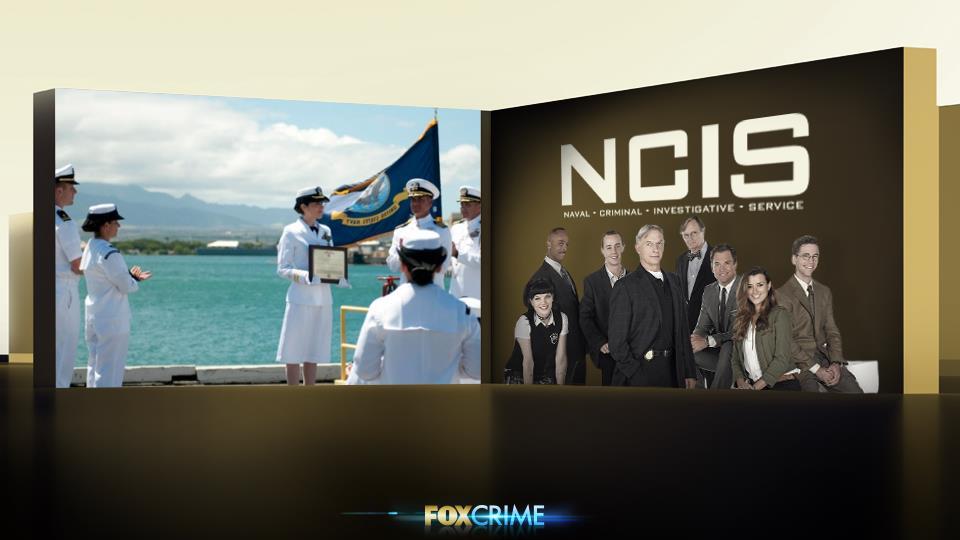 Attualmente l'esercito dei Navy Seals conta oltre 328,186 soldati in attività.