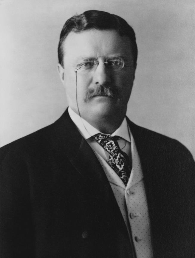 Il presidente USA Teddy Roosevelt