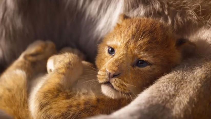 il re leone debutta in italia con quasi 3 milioni di euro