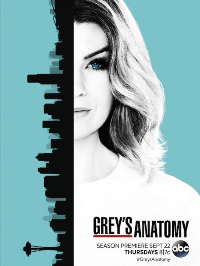 Meredith a metà nel poster di Grey's Anatomy 13